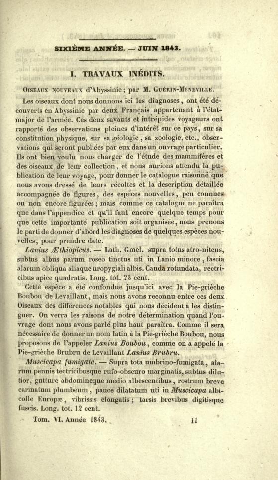 I. Travaux Inedits. Oiseaux Nouveaux d'Abyssinie
